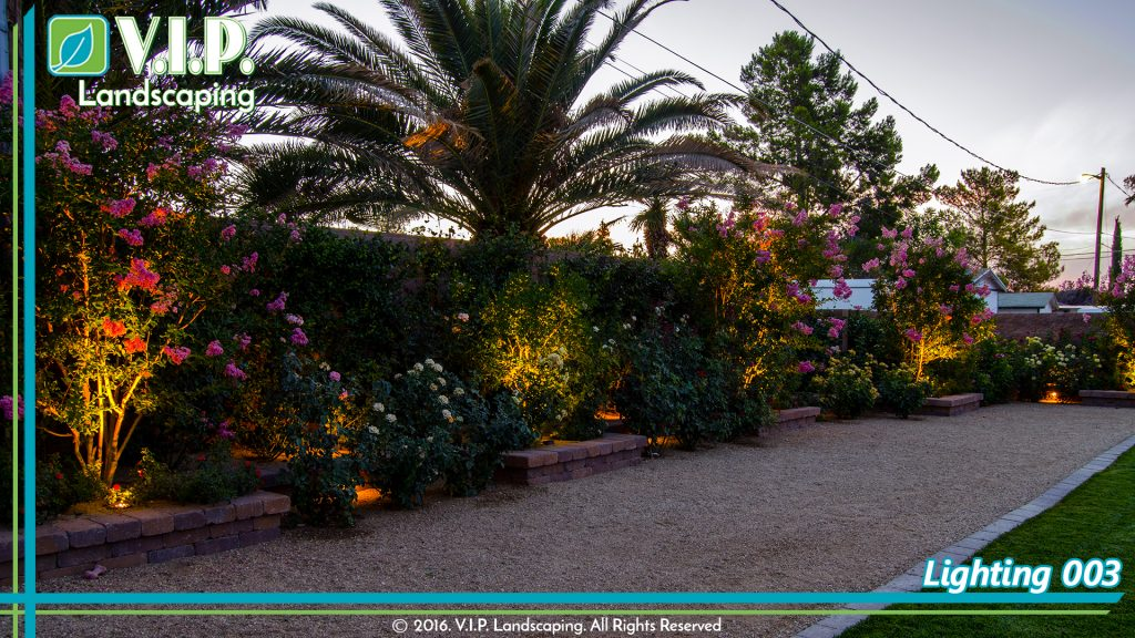 Colorful flowers lighted by low voltage lighting system in back yard