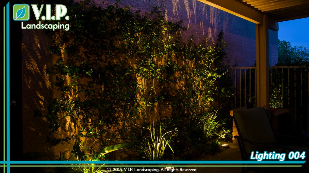 Back yard low voltage lighting plants and trees