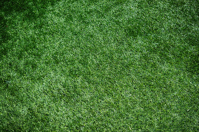 Artificial turf. Artificial grass installation in Las Vegas