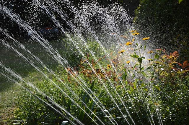 Watering grass and flower garden